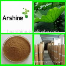 Травяная лекарственная потеря веса Экстракт листьев лотоса