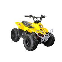 50cc / 70cc / 110cc Kids Mini ATV with One Seat (MDL GA001)