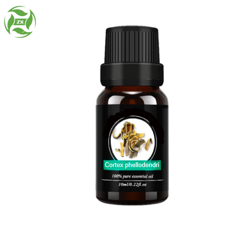 Herbal Oil Cortex Phellodendri Oil Aromatherapy Oil