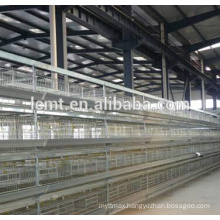 Layers cages H type for sale