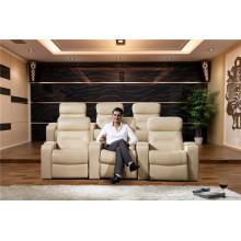 Living Room Genuine Leather Sofa (795)