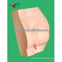 Modèle de formation médicale HOT SALE pour l'injection de fessée