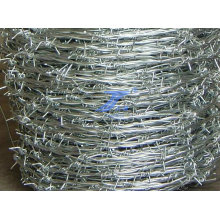 Protection Galvanized Barbed Wrie (factory)