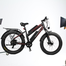Highly cost effective 1000w wheel double battery electric bicycle for quality primacy