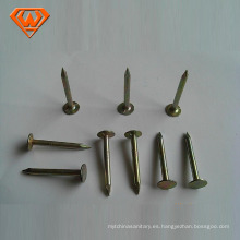 Umbrella Head Roofing Coil Nails