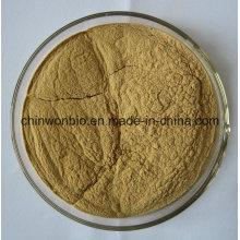56. Potent Fat Burner Guarana Extract