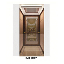 Villa Elevator with Mirror Finished Stainless Steel (KJX-BS07)