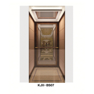 Ascenseur de villa avec acier inoxydable fini miroir (KJX-BS07)