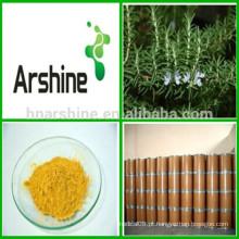 Suplementos nutricionais Extrato de folha de alecrim 3% -20% Ácido de ácido rosmerínico