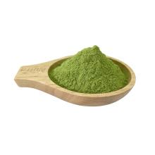Hochwertiges Bio-Gemüse-Grünkohlblatt-Extrakt-Pulver