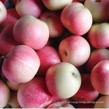 Nova Guloseima Red Gala Apple Aplicar Sweet and Juicy