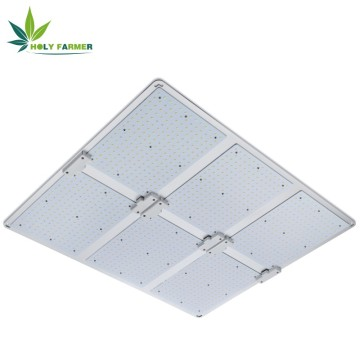 600W LED Grow Light Board