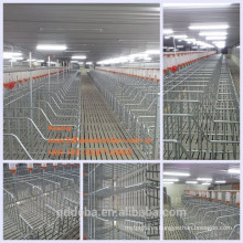 2018 pig farming use hot galvanized popular gestation crate sow stall