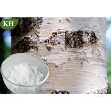 Treating Several Forms of Herpes and Even Aids of Birch Bark Powder Extract