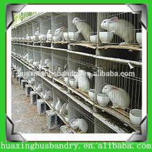 Chicken Cage&Rabbit Cage&Pigeon Cage