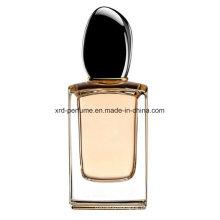 Perfume quente do homem do projeto da venda