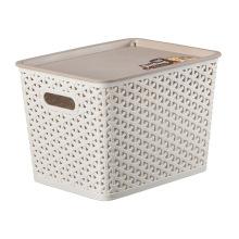 Пластиковый ящик для хранения для хранения (SLSN065)