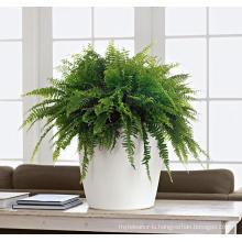 (BC-F1042) Fashionable Design Plastic Self-Watering Flower Pot