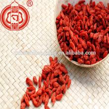 La Chine a certifié des fruits secs organiques de baie de goji avec le certificat casher de goût doux