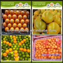 Назовите все цитрусовые / мандарин апельсин / свежий апельсин / список желтых фруктов