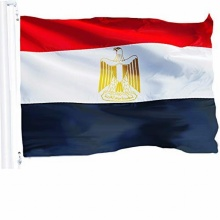 European Cup custom free sample high quality wholesale new design embroidered egypt election flag