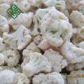 agv for frozen vegetable line fresh frozen garlic