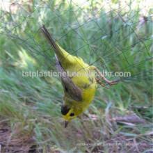 redes de pájaros para la venta