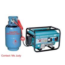 Бензиновый генератор Bn6500-LPG 5kw однофазный AVR