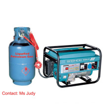 AVR du générateur 3kw de générateur d'essence de Bn3000-LPG