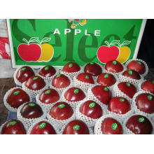 Chinese Fresh Red Apple, Huaniu Apple