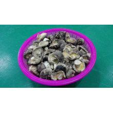Dried Smooth Shiitake Mushroom 3kg Bag