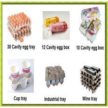 Máquinas automáticas de caixa de ovos