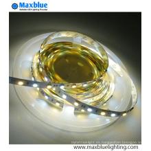 Doble blanco CCT ajustable SMD2835 LED luz de tira