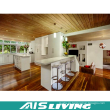 Muebles por encargo modernos de los gabinetes de cocina (AIS-K411)