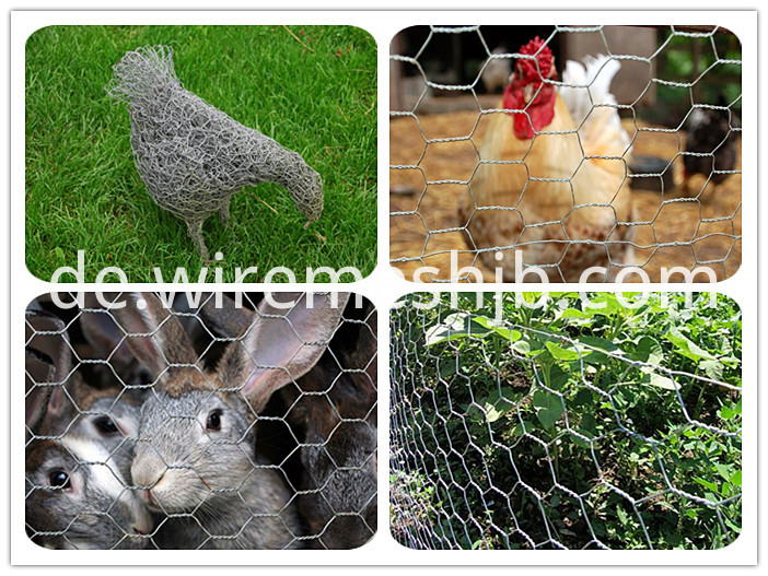 Hexagonal chicken wire