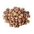 Natural Product Healthy Dried mushrooms Hot sale