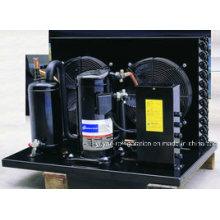 Kühlraum-Emerson Copeland-Kompressor