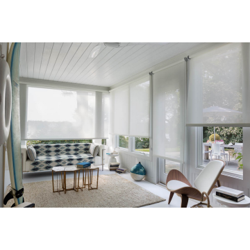 Stylish roller shade for your windows