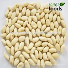 Blanched Peanuts&Peeled Peanuts
