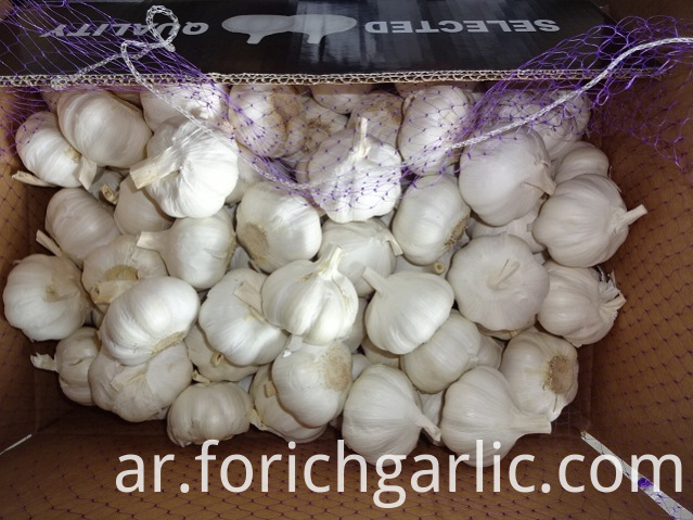 How To Store Fresh Garlic