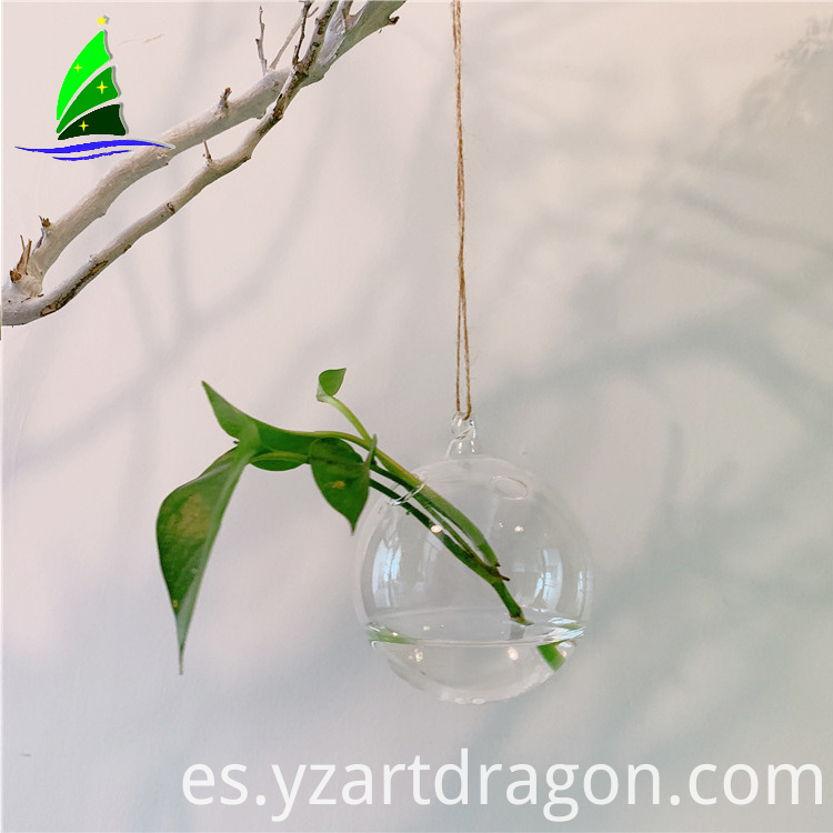 Artdragon-hanging-egg-shape-glass-terrarium-4home