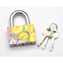 New Arrival flower painted Electroplating Small Cute square vane key pattern printing Iron Padlock