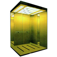 Luxury Passenger Lift with Otis Quality