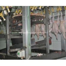 Chicken Feet Cutting Machine