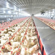 Equipamento de galpão de controle de aves para casa de criadores