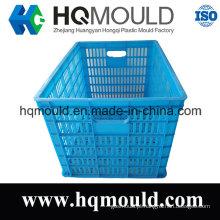 Molde personalizado HDPE da caixa plástica para o armazenamento com certificação do ISO