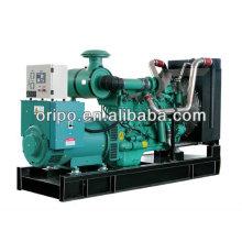 250kva 60hz preço do gerador diesel elétrico na China fabricante de gerador elétrico
