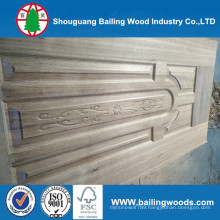 HDF / MDF Moulded Door Skins