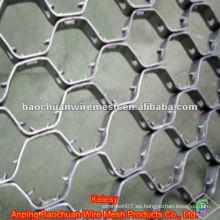 Resistente al calor Acero inoxidable Tortoise Shell Mesh (Fábrica)