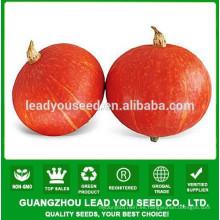 JPU05 Hongguo semillas de calabaza híbridas amarillas, sabor semillas de calabaza f1